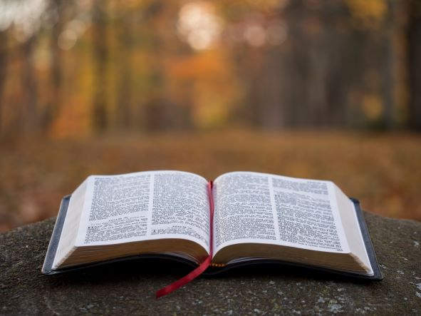 picture-of-bible_87